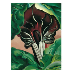 """""""Jack In The Pulpit II """" Art, 15""""x20"""""""