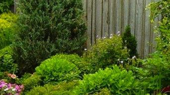 Garden & Landscape Designs