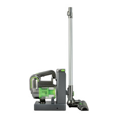 2-in-1 Cordless Cyclonic Vacuum Cleaner, Green and Silver