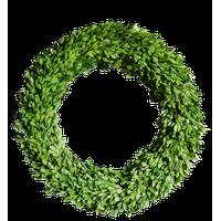 "Boxwood Country Manor 24"" Round Wreath"