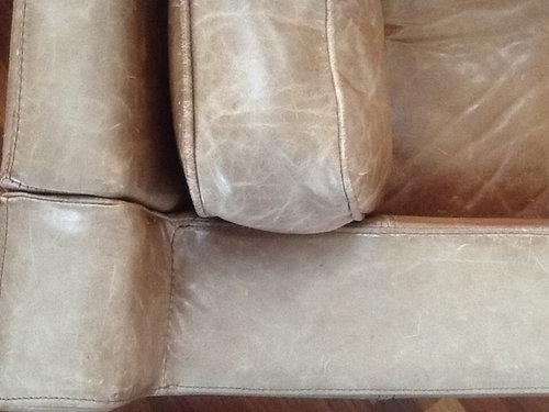 Fabulous Brompton Leather Care Inzonedesignstudio Interior Chair Design Inzonedesignstudiocom