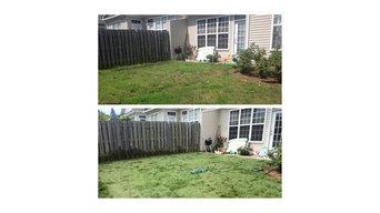 Backyard sod
