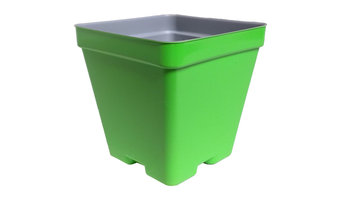 "4"" Press Fit Pot Lime Green"