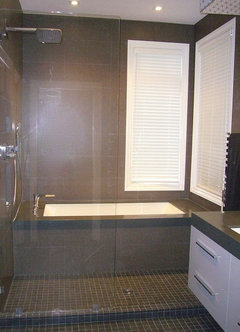 WET AREA   Shower   Tub   More InfoWhy to Put Your Tub in the Shower. Walk In Shower With Tub Inside. Home Design Ideas