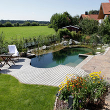 Natural Swimming Pools and Ponds with a Purpose