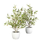 18 in. Olive Silk Tree w Vase - Set of 2