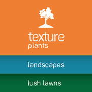 Texture Landscapes: a division of Texture Group's photo