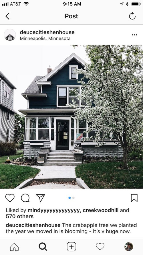 Help Exterior Paint Color For Tiny House