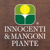 Foto di Innocenti & Mangoni Piante