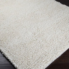 Surya Shag Metropolitan Area Rug Rectangle Ivory 3 6 X5