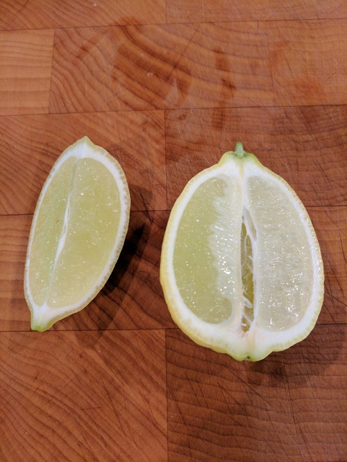 10 Health Benefits of Having Lime and Lemon in Your Diet | | 666x500