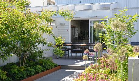 Fixa drömträdgård på liten budget