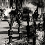 """The Andy Moine Company LLC - Iron Fence Spanish Moss New Orleans Louisiana, 10""""x15"""", Maple Wood Print - Black and White Fine Art Photography captured with 35MM Ilford Film and reproduced on Canvas OR Brushed Aluminum. This is a beautiful composition of a Decorative Iron Fence draped in Spanish Moss in the Garden District of the always Majestic - New Orleans, Louisiana."""