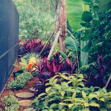 Boca Raton Tropical Shade Landscape