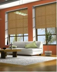 Roller Blinds and Shades
