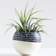 - Black and White Color-Block Herringbone Air Plant Pod by Bird and Feather - Pflanzgefäße & Pflanztöpfe