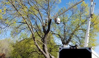 Mel's Tree Service and Maintenance
