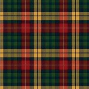 Stevens and Graham Tartan Carpets's photo