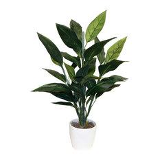 Bird of Paradise Foliage Floor Plant