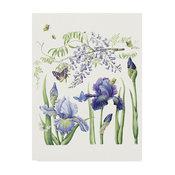 "Janneke Brinkman-Salentijn 'Iris & Wisteria' Canvas Art, 19""x14"""
