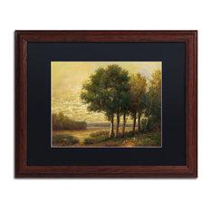 """Daniel Moises 'Tranquility' Framed Art, Wood Frame, 16""""x20"""", Black Matte"""