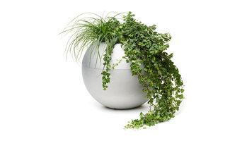 Planteringskärlet GEO