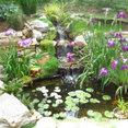 Paradise Gardens, LLC's profile photo