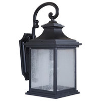 Gentry One Light Outdoor Medium Wall Mount Midnight Clear Seeded Glass