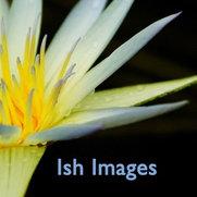 Foto de Ish Images