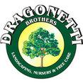 Dragonetti Brothers Landscapes's profile photo