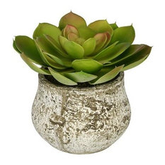 Artificial Red-Tip Echevaria Succulent in Distressed Cement Vase