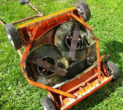 Whatever Happened To Twin Blade Electric Mowers