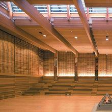 Beautiful Acoustics