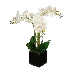 Artificial White Triple Stem Orchid in Black Cube Vase