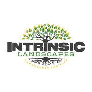 Intrinsic Landscapes's photo