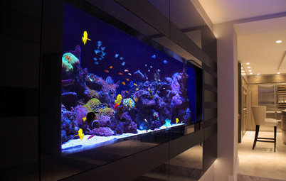 13 of the Best Home Aquarium Designs on Houzz