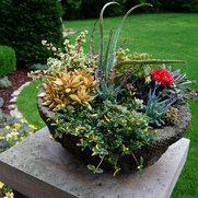 Ashley Hansen - Bachman's Garden Maintenance's photo