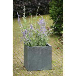 """Modern Concrete Square Pot Planter, Grey, 12""""x12""""x12"""""""