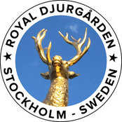 Royal Djurgården's photo