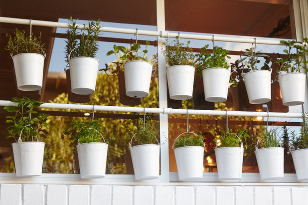 How do I...Create a Potted Herb Garden?