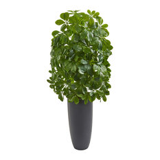 Schefflera Artificial Plant in Gray Planter (Real Touch)