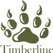 Timberline Contracting, Inc's photo