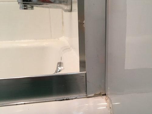 Shower Door LeakageCaulk Or Silicone - Caulk to use in shower