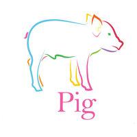 "Rainbow Pig Canvas Print, 10""x10"""