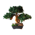 Manzo Triple Bonsai Tree, Sandblasted
