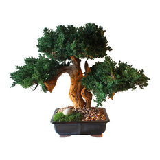 50 Most Popular Artificial Bonsai Trees For 2021 Houzz