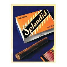 Splendid by Fred Nuecomm Cigar Box Canvas Artwork