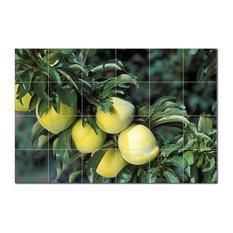 Fruits Vegetables Ceramic Tile Mural Kitchen Backsplash Bathroom Shower, 405202