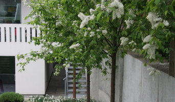 Chiswick contemporary house and garden