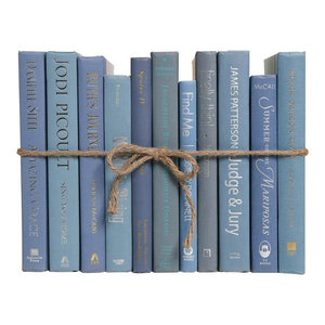 Decorative Books, The Modern Steel Blue Colorpak